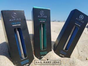 Product Review: Alpine Disposable Vapor Pen