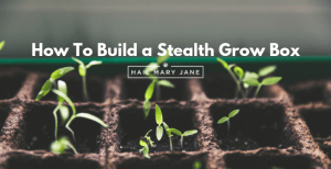 How To Build a Stealth Grow Box Step By Step For Less Than $150