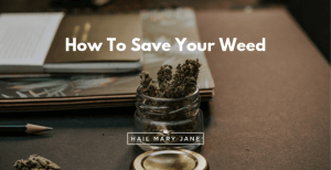 Best Ways To Conserve Your Weed