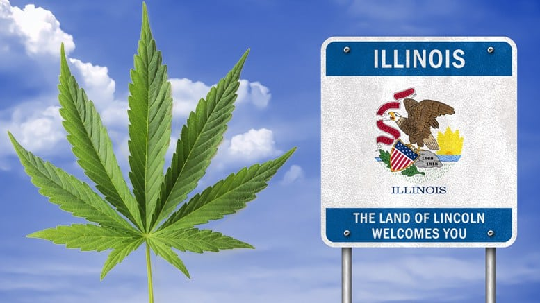 Medical Cannabis Industry with Release of Largest Illinois Patient Study