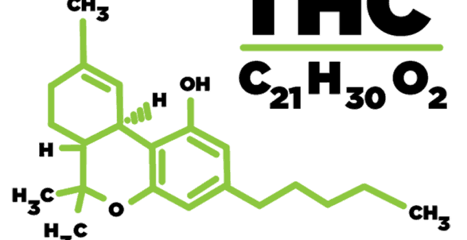 What Is Thc Guide On Tetrahydrocannabinol Hail Mary Jane