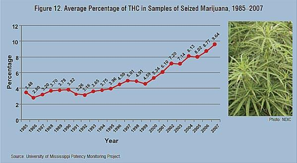 Thc percentages on the rise hail mary jane for How long does fish oil stay in your system