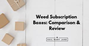 Cannabox vs Buddha Box vs 420 Goody Box – Comparison & Review