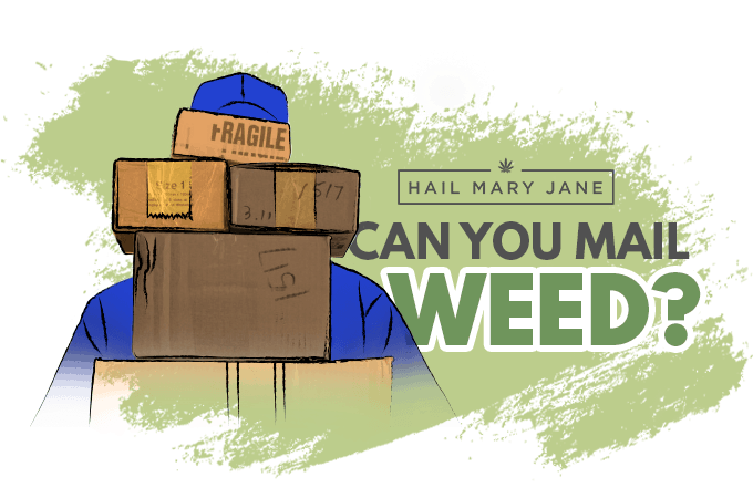 Mailing Weed: All You Need To Know And Best Practices To