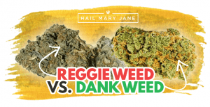 How To Know Whether You Bought Good or Bad Cannabis