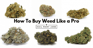 How To Buy Weed Like A Pro? [Complete Guide]