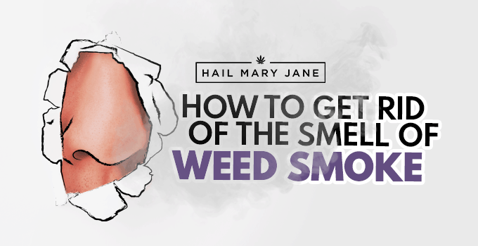 10 Ways To Get Rid Of The Smell Of Weed Smoke - Hail Mary Jane ®