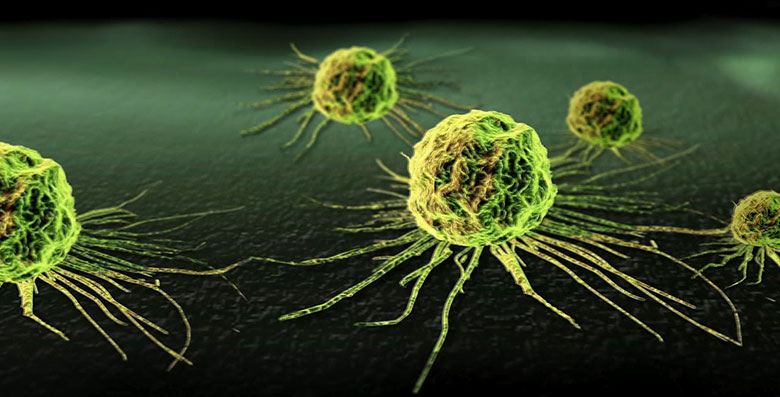 scientific evidence that cannabis kills cancer cells