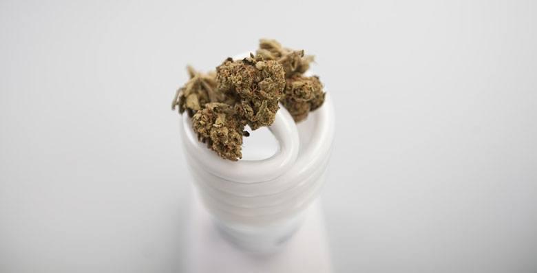 why microdose cannabis