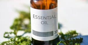 Cannabis Tinctures: A Complete Guide to Making & Using Tincture