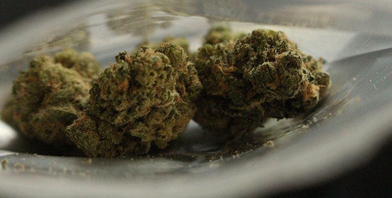 medical-cannabis-california