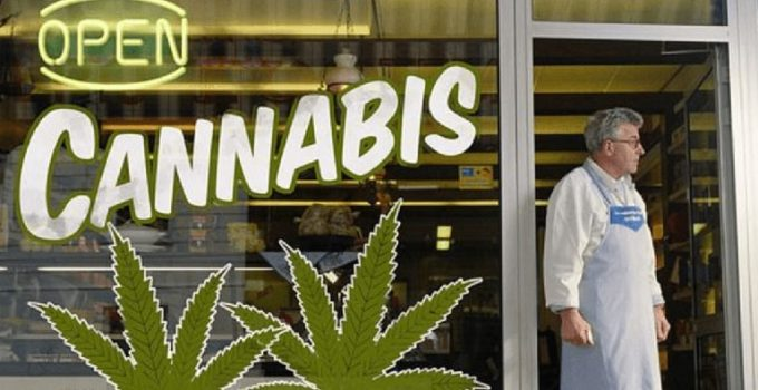 The-Potential-of-Weed-Legalization