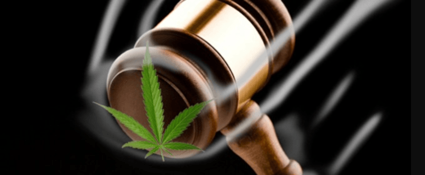 an introduction to the advantages and disadvantages of marijuana legalization Advantages and disadvantages of marijuana advantages physical benefits the physical benefits of marijuana are far-reaching, widespread, and long-term.