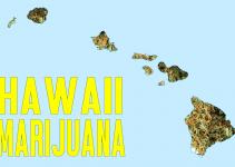 hawaii selling marijuana