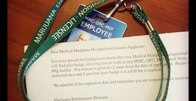 mmj-badge-colorado