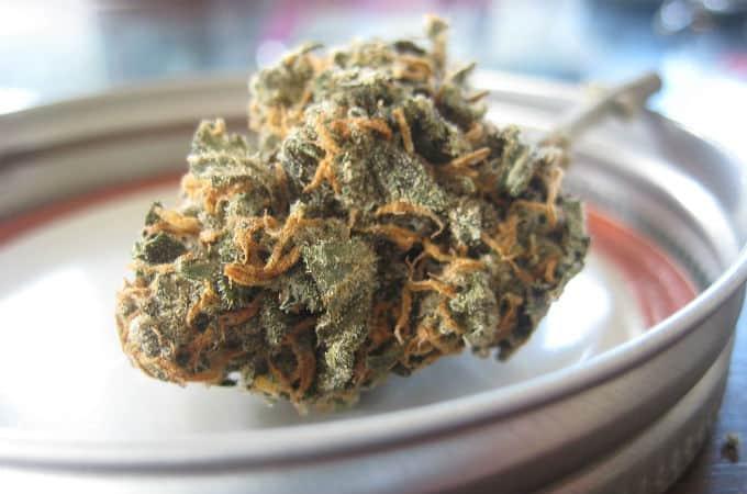 cannabis storage