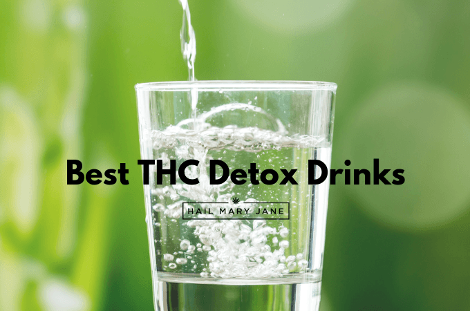 Best Detox Drinks To Get THC Out Of Your System - Hail Mary