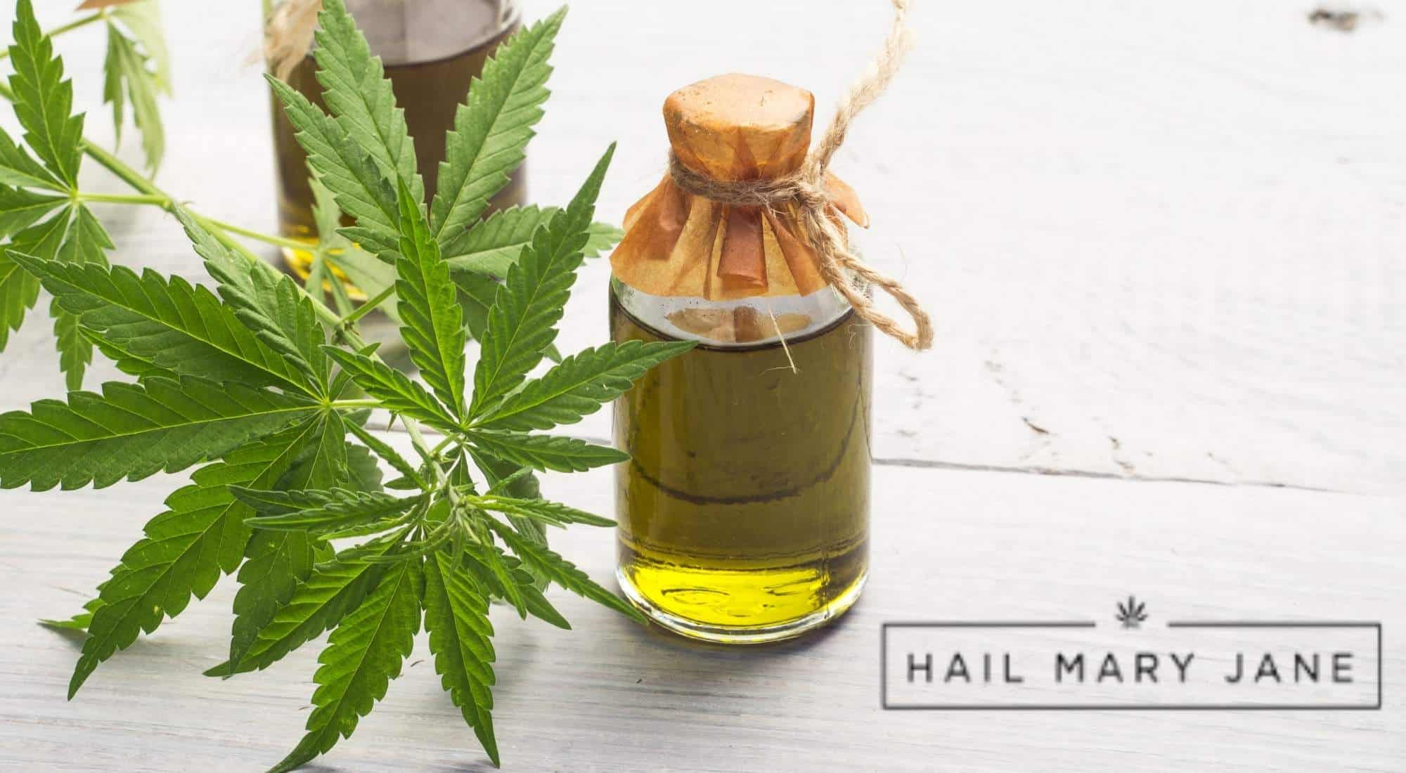 You are currently viewing Hemp Vaping 101: Can You Vape CBD Oil?